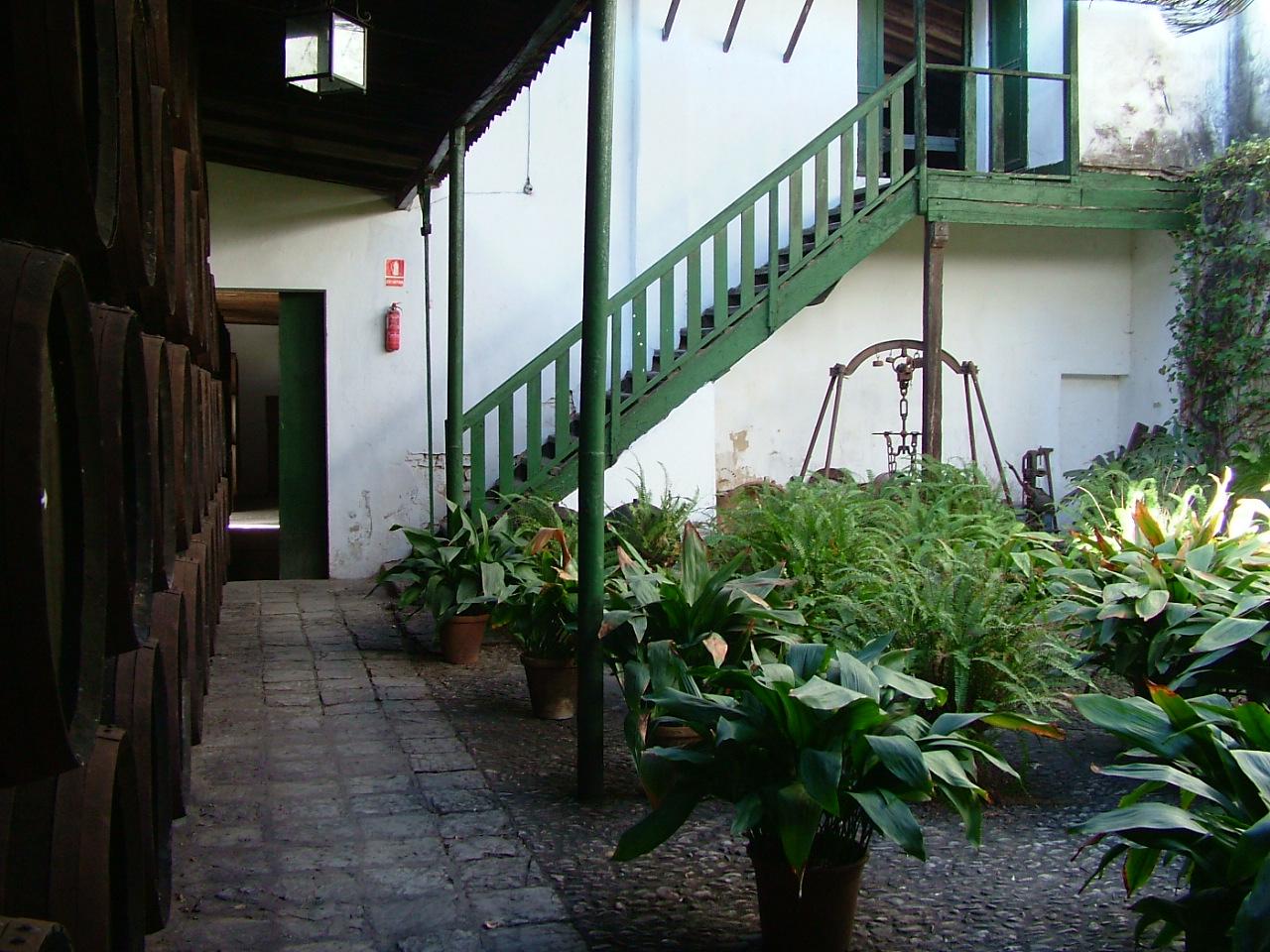 Los patios forman parte del ecosistema natural  de la bodega