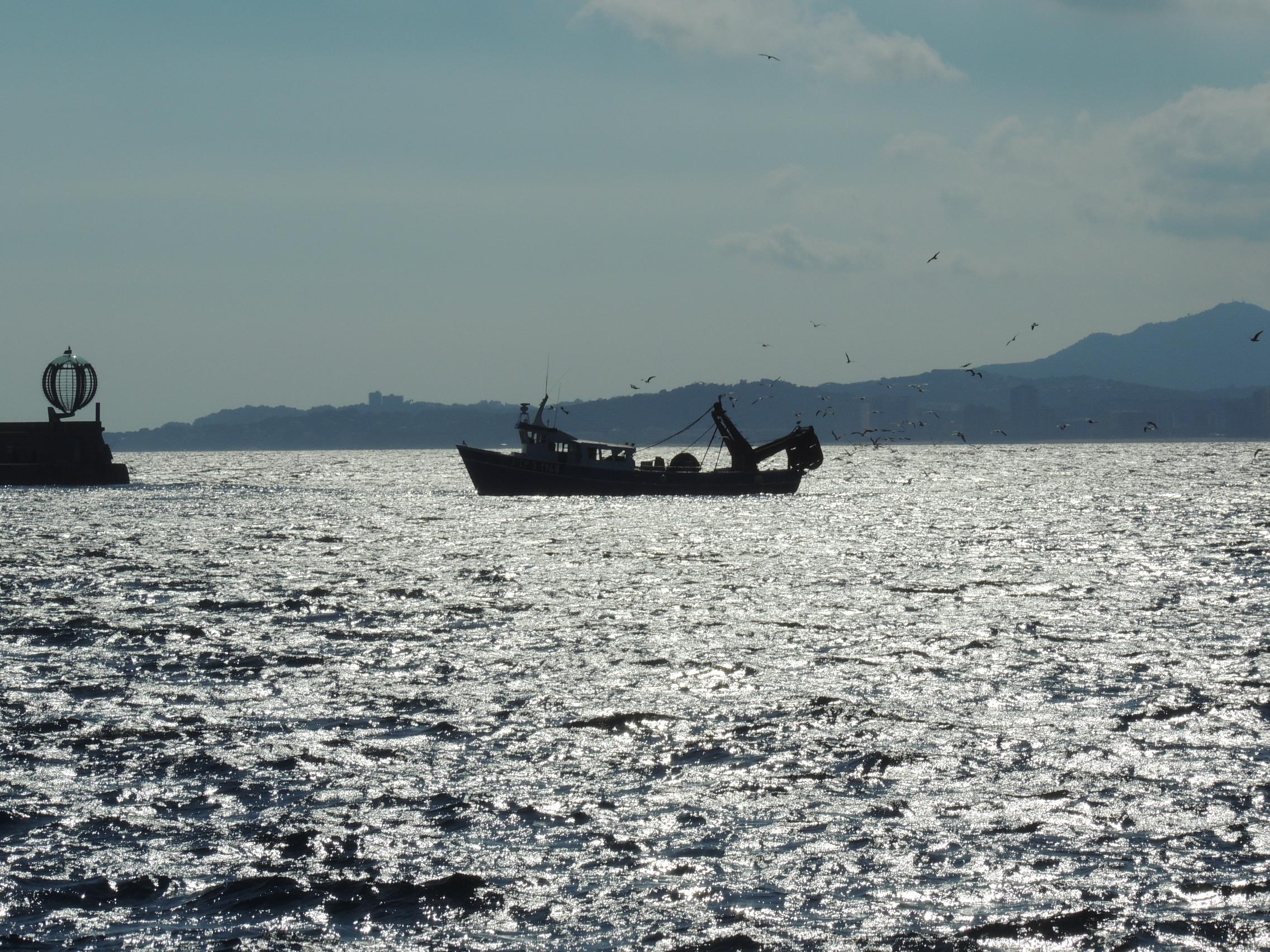 En el puerto de Palamós