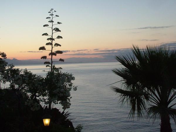Amanecer en el Hotel Jardín Tecina