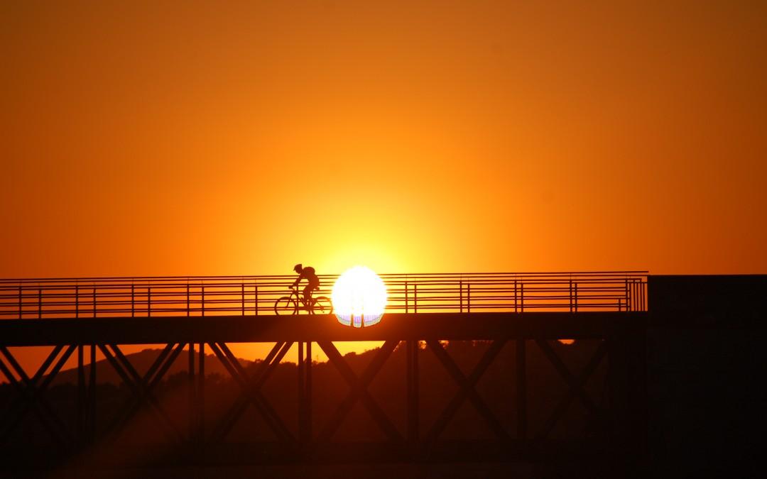 Vía verde del aceite: un gran itinerario para cicloturistas