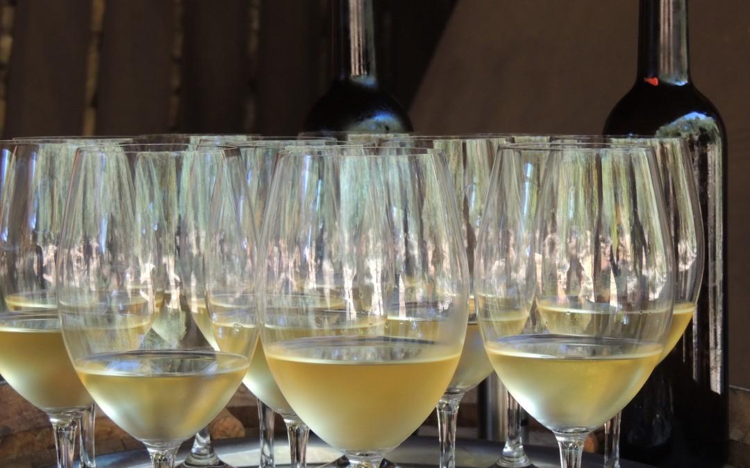 Buscamos los Mejores Vinos de España para presentarlos en RNE
