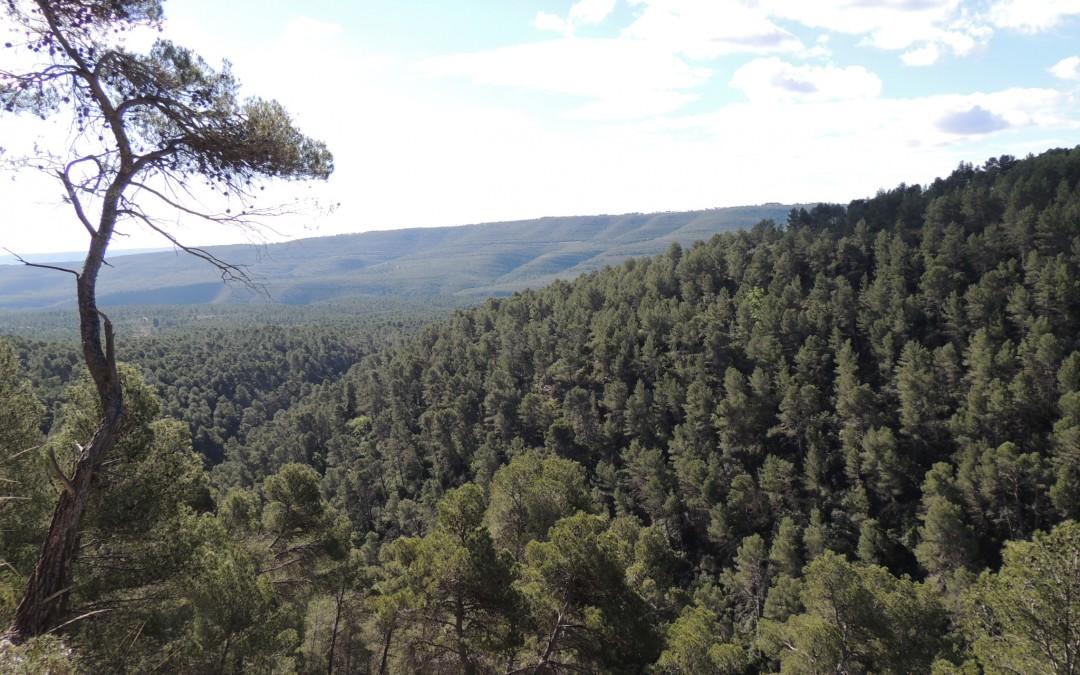 La maravillosa Sierra de Enguera: no te la imagines, descúbrela.