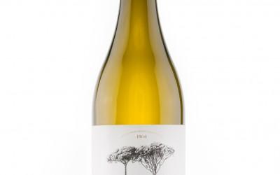 Serie  Los Mejores Vinos de España: Quinta de Couselo 2015, la verdadera esencia de O Rosal